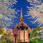 Branes kirke